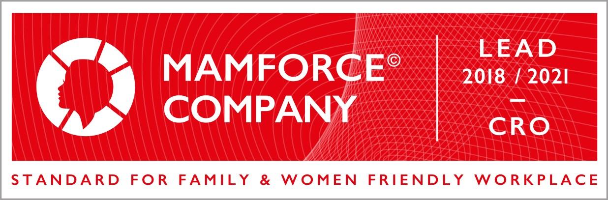Mamforce / Dadforce Standardi